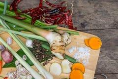 Ingredienser thailändsk TUM-YAM Arkivbild