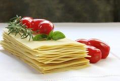 ingredienslasagne Royaltyfri Bild