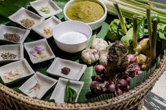 Ingredient of green curry cooking for thai food. The thai herbs ingredient cussine are part of thai food Stock Photos