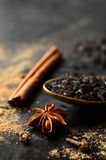 Ingredient for making tea masala. Stock Images