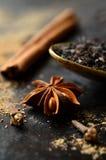 Ingredient for making tea masala. Royalty Free Stock Images