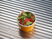 Ingredient - Red and Green chili Stock Images