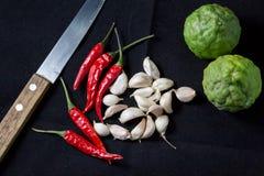 Ingredient thai food Royalty Free Stock Images
