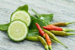 Ingredient thai herb for Tomyam cuisine. On stone Stock Images