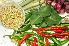 Ingredient of thai soup Royalty Free Stock Image