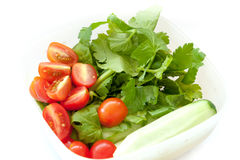 Ingredient of Thai yummy and salad Royalty Free Stock Image