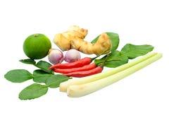 Ingrediente alimentario tailandés para el kung del yum de Tom foto de archivo libre de regalías