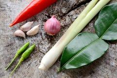 Ingrediente caldo e piccante di verdure Immagine Stock Libera da Diritti