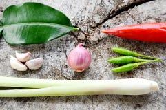 Ingrediente caldo e piccante di verdure Immagini Stock