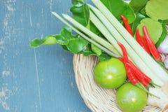Ingrediente da erva da sopa picante de Tom Yum Fotografia de Stock