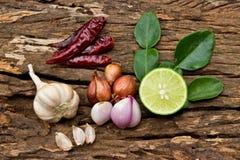 Ingrediente di alimento caldo e piccante per alimento tailandese su legno Fotografie Stock Libere da Diritti