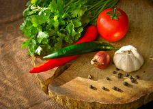 Ingrediente di alimento tailandese Fotografia Stock