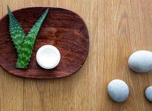 Ingrediente naturale di bellezza con aloe puro vera per i cosmetici del fronte Fotografia Stock Libera da Diritti