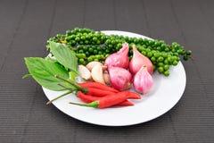 Ingrediente piccante tailandese Immagini Stock