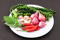 Ingrediente piccante tailandese Fotografia Stock