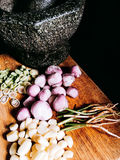 Ingrediente principal de la goma tailandesa del curry foto de archivo