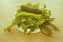 Ingrediente verde dell'erba, verdure su un fondo di legno Fotografia Stock