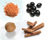 Ingredientes alimentarios - cinamomo de la nuez de las aceitunas de las lentes Fotografía de archivo
