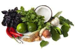 Ingredientes alimentarios tailandeses imagen de archivo