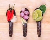 Ingredientes alimentarios tailandeses picantes fotos de archivo