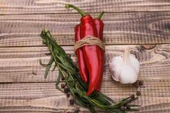 Ingredientes aromáticos con gusto picante Imagen de archivo libre de regalías