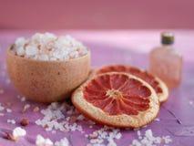 Ingredientes da aromaterapia e dos termas foto de stock royalty free