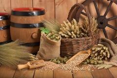 Ingredientes da cerveja Imagem de Stock
