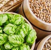 Ingredientes da cerveja Fotografia de Stock Royalty Free