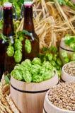 Ingredientes da cerveja Imagens de Stock Royalty Free