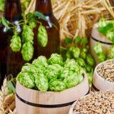 Ingredientes da cerveja nos tambores Imagem de Stock Royalty Free