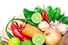 Ingredientes da erva e da especiaria para o alimento asiático no fundo branco foto de stock