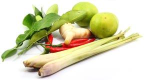 Ingredientes de alimento tailandeses foto de stock