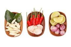 Ingredientes de alimento tailandeses picantes imagens de stock