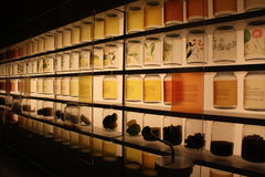 Ingredientes de alimento tropicais indicados no Museu Nacional de Singapura Fotos de Stock Royalty Free