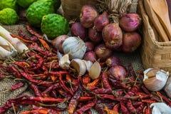 Ingredientes de cocinar tailandeses Fotografía de archivo