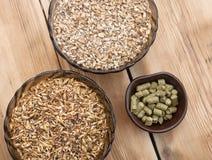 Ingredientes de la cerveza Fotos de archivo libres de regalías