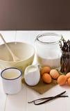 Ingredientes de la crema de Vanilla Ice Fotos de archivo libres de regalías