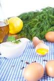 Ingredientes de la mayonesa en mantel Foto de archivo libre de regalías