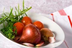 Ingredientes de la salsa de pastas Imagen de archivo