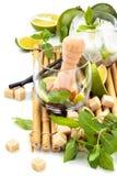Ingredientes de Mojito no branco Imagens de Stock