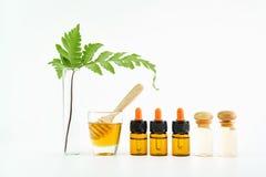 Ingredientes de productos para el cuidado de la piel Y miel en el vidrio Foto de archivo