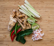Ingredientes de Tom Yum em um fundo natural Fotografia de Stock