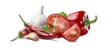 Ingredientes 2 del adjika del perejil de la pimienta de chile del ajo del tomate Fotos de archivo