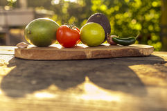 Ingredientes del Guacamole en luz del sol Foto de archivo libre de regalías