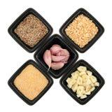 Ingredientes do alho Imagens de Stock
