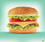 Ingredientes do Hamburger Infographics do vetor Foto de Stock