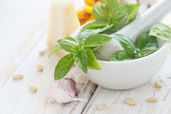 Ingredientes do molho de Pesto Fotografia de Stock