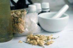 Ingredientes do sabão Imagens de Stock Royalty Free