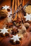 Ingredientes e especiarias do cozimento Fotografia de Stock Royalty Free