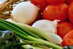 Ingredientes frescos da salsa fotos de stock royalty free